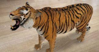 real_ar_tiger-750×438